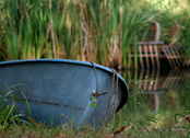 boat at pond