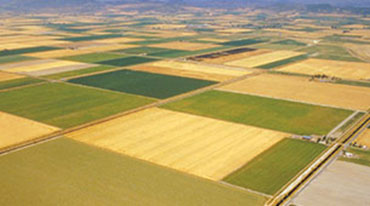 Aerial view of cropland.