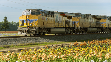Photo of freight train running through Brooks, Oregon.