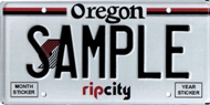 Custom Trail Blazers plate