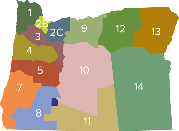 State district map