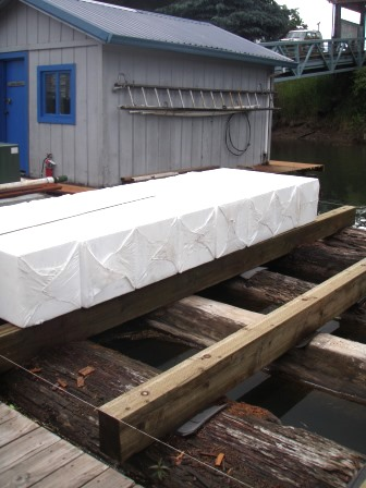 Foam encapsulation for placement under a new dock