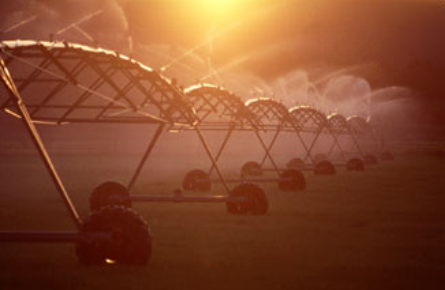 This is a photo of farm land being irrigated using a center pivot
