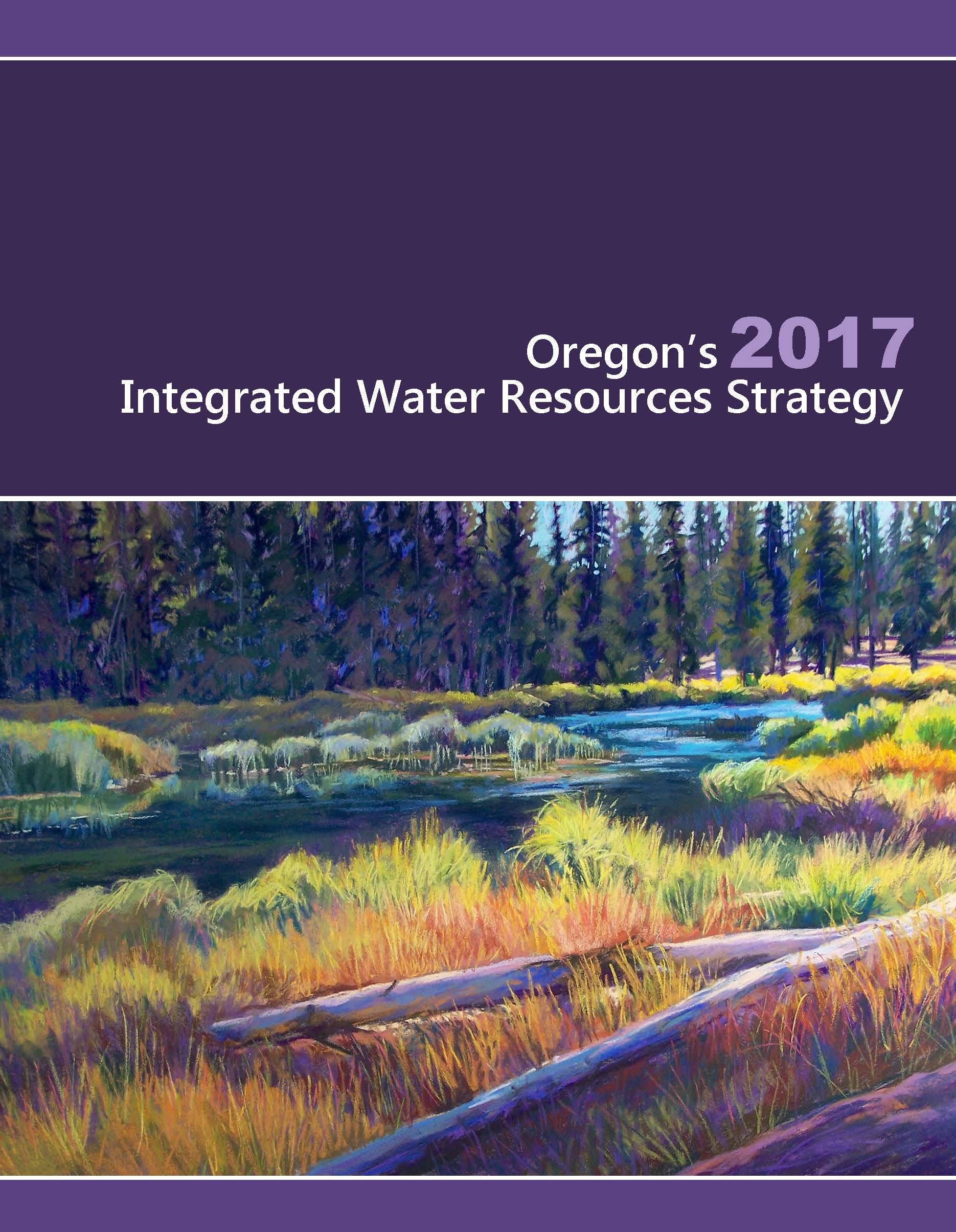 A photo of the cover page of the Integrated Water Resouces Strategy Publication
