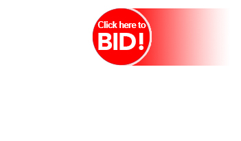 Click here to bid button.
