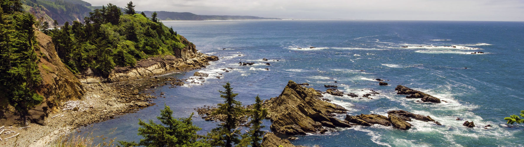 Picture of the Oregon coast