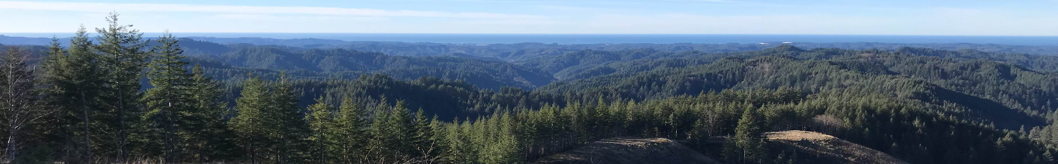 Photo of mountains covered with trees that make up Elliott State Forest