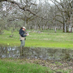 A person stands in a wetland making scientific observations