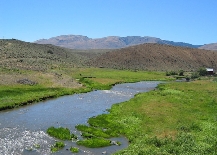 Creek babbles through backdrop of varied soil and vegetation types of Richland, Oregon, in Baker County