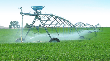 Irrigation system spraying green field.