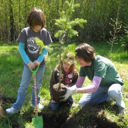 Photo of children planting a tree