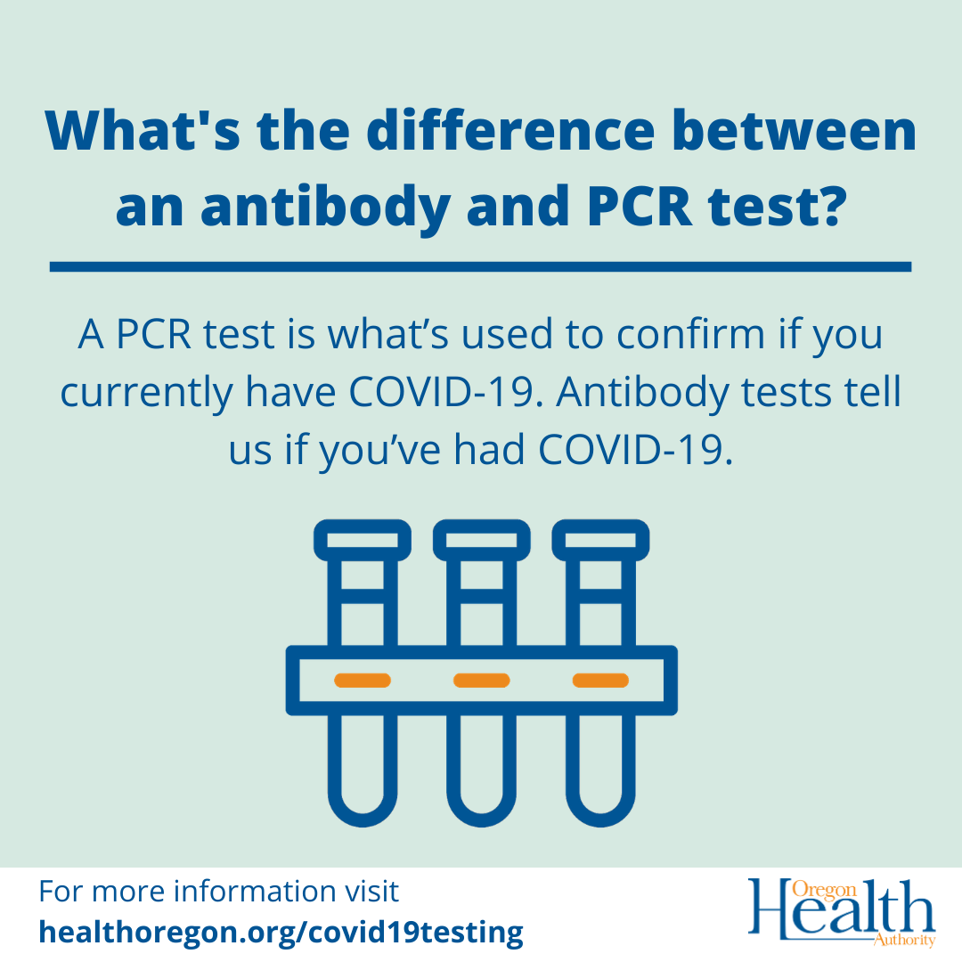 what's the difference between an antibody and PCR test?