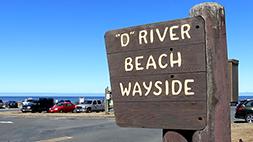 D Rover Beach