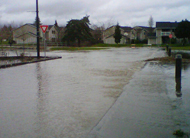 flooded residential street