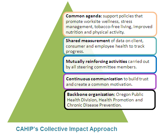 Diagram of CAHIP's collective impact approach