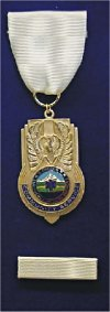 Community Service Medal