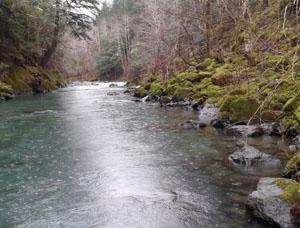 Elk River Scenic Waterway