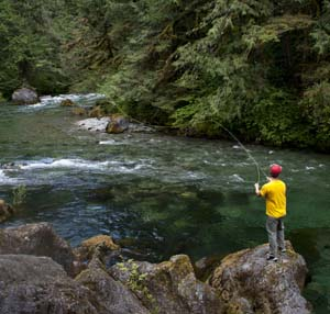 Little North Fork Santiam River fishing