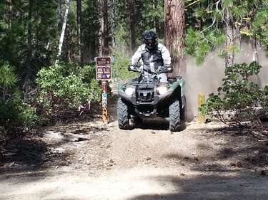 Person riding an ATV on a trail in the forest