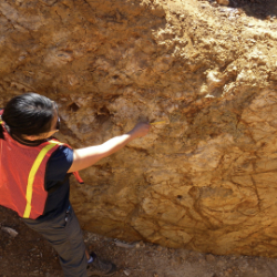 image of geologist inspecting road cut