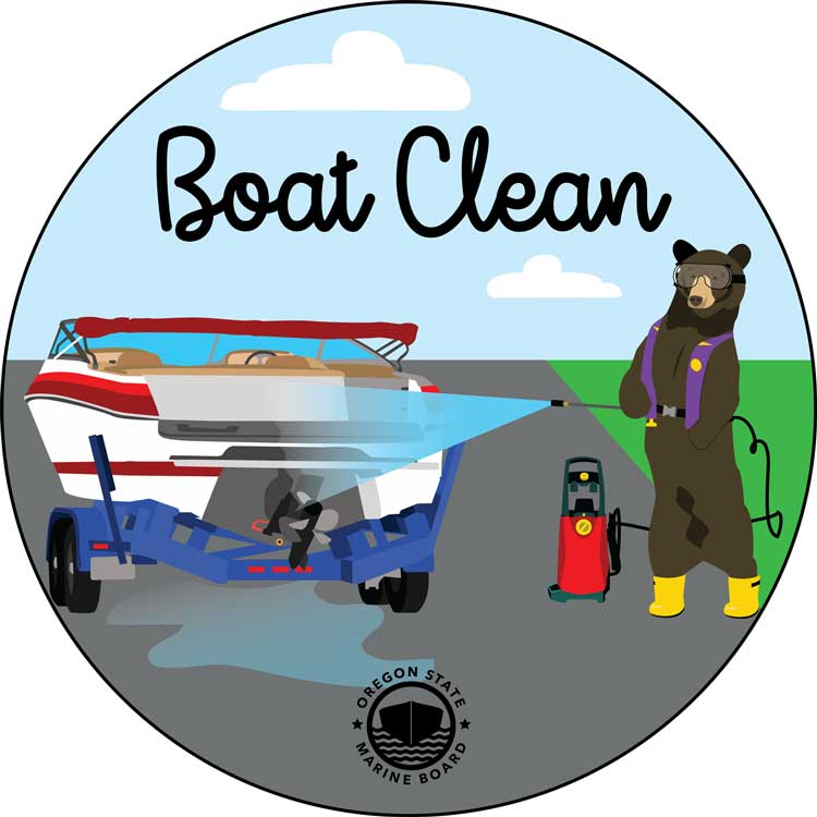 Boat Clean Bear Sticker