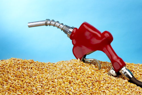 Gasoline pump on top of a heap of corn