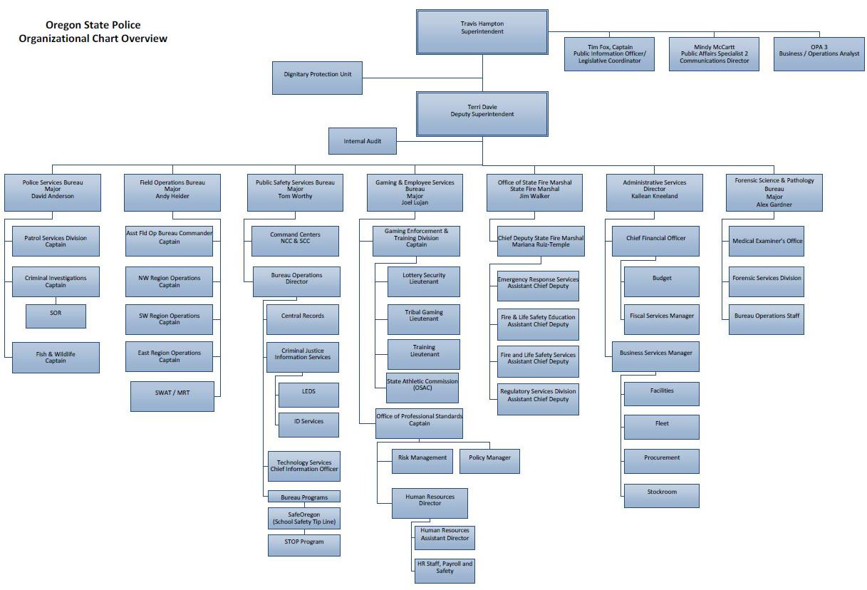 Download the OSP Organizational Chart