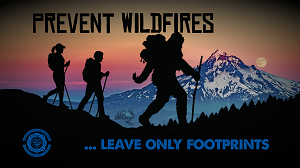 "Bigfoot ""Leave Only Footprints"" Wallpaper"