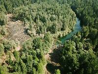 South Fork McKenzie River aerial view