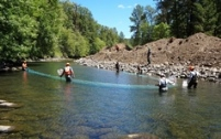 South Fork McKenzie River fish salvage