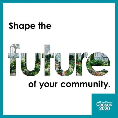 Image of 2020 Census Logo
